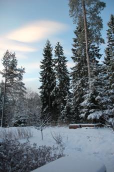 Hagen ved vintersolverv