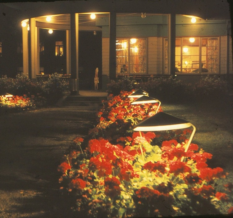 Nattbilde parken tidlig 60 - tall