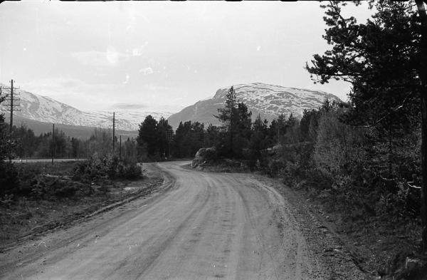 Lesjaskog 1956