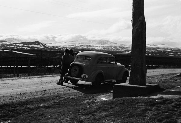 Dovrefjell 1953